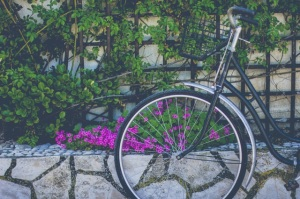 bike with basket leaning against stone wall with flowers